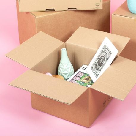 Petit carton double épaisseur renforcé - CartonDemenagement.com