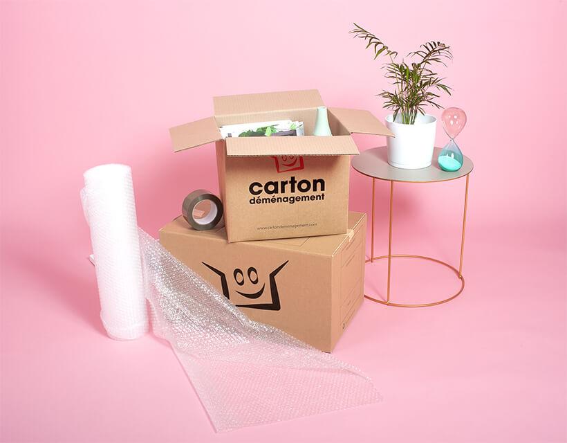 Kit cartons déménagement studio