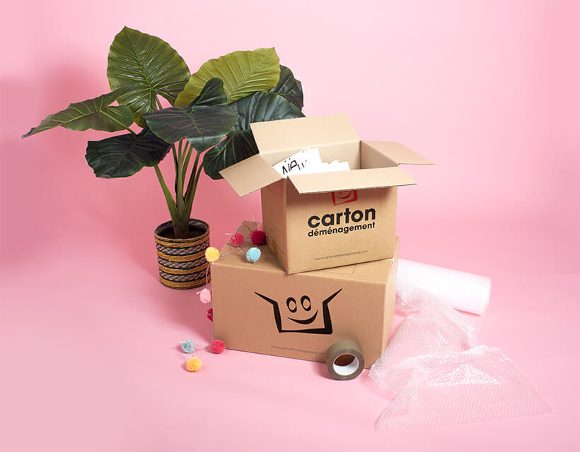 Kit cartons déménagement T5/T6